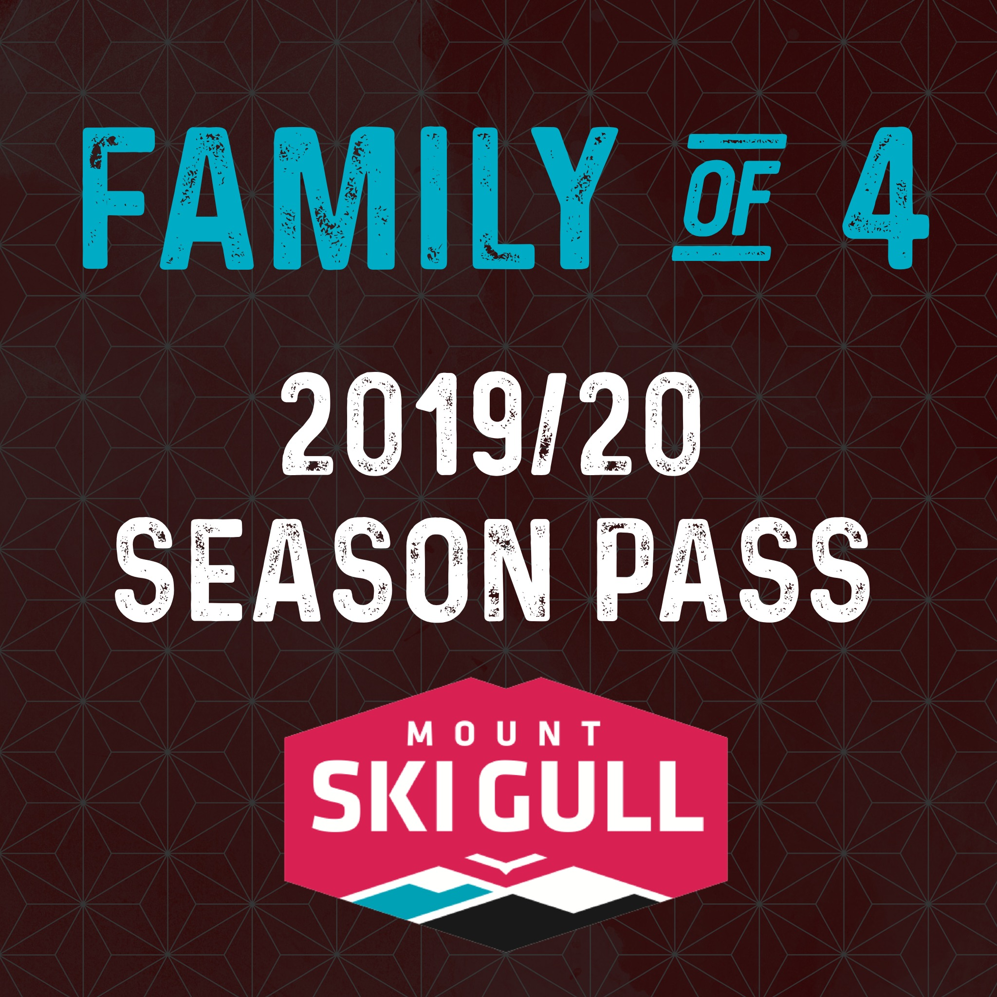 2019/20 Family of 4 Season Pass